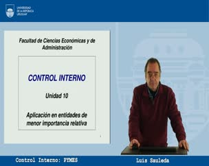 Control Interno: PYMES